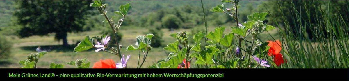 meingrünesland – Kooperation zur Direktvermarktung von Bio-Lebensmitteln